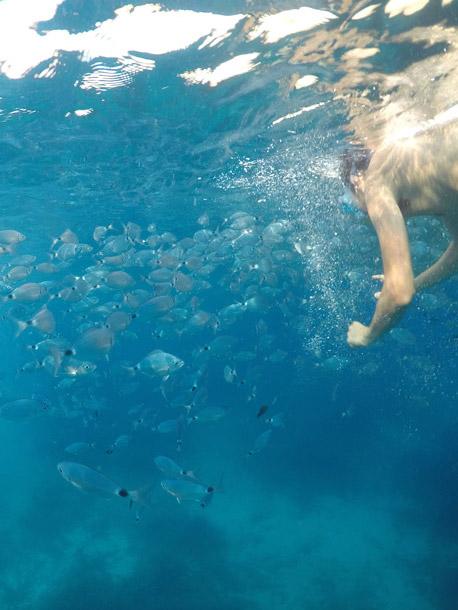 thaiti beach caprera island sardinia during a boat tour with emerald cruises
